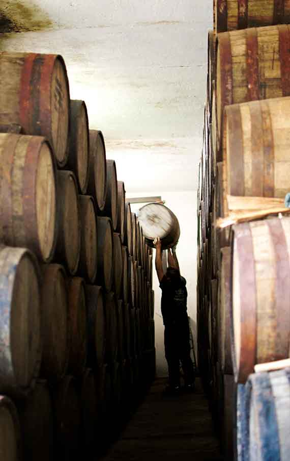 The aging of the Tequila Fortaleza