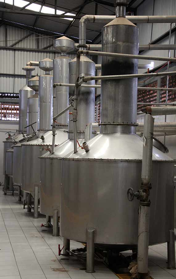 The Distillation stainless pot still in Tres Toños Distillery