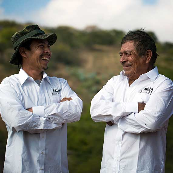Cesareo and Pipino the Maestros Mezcaleros