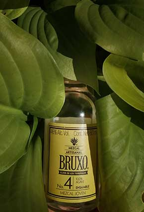 Bruxo 4 in the mother nature