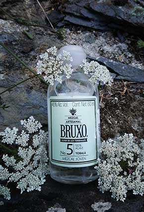 Bruxo 5 in the mother nature