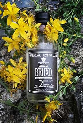 Bruxo 2 in yellow