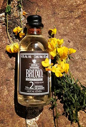 Bruxo 2 with the mother nature
