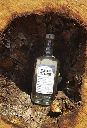 Bottle within wood