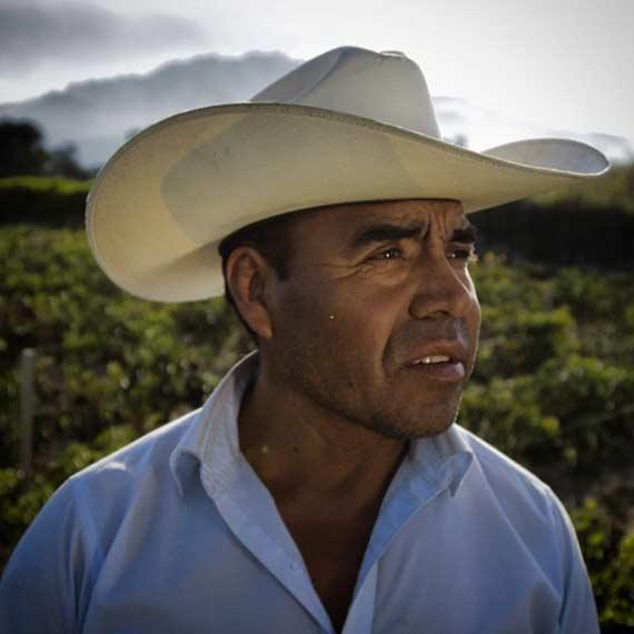Saul, the Ancho Reyes farmer